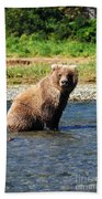 Posed Perfection Beach Towel