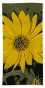 Posterized Smooth Oxeye Beach Towel
