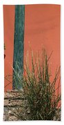 Pot Plants Beach Towel