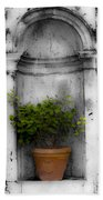 Potted Plant At Villa D'este Near Rome Italy Beach Towel