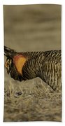 Prairie Chicken-9 Beach Towel by Thomas Young