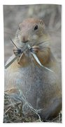Prairie Dog Food Beach Towel