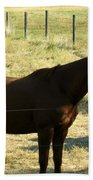 Prarie Stallion In The Shade Beach Towel by Barbara Griffin