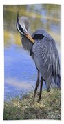Preening By The Pond Beach Towel
