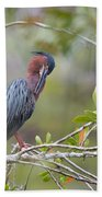 Preening Greenie Beach Towel