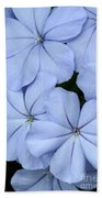 Prettiest Plumbago Beach Towel