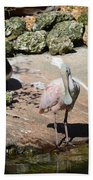 Pretty Bird Beach Towel
