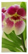 Pretty Faces - Orchid Beach Towel