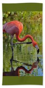 Pretty Flamingo Beach Towel