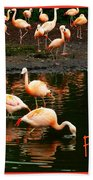 Pretty Flamingos Beach Towel