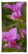 Pretty Fuschia Rhododendron Beach Towel