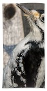 Pretty Hairy Beach Towel