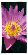Pretty In Pink And Yellow Water Lily Beach Towel