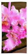 Pretty In Pink Cattleya Orchids Beach Towel