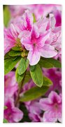 Pretty In Pink - Spring Flowers In Bloom. Beach Towel