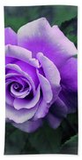 Pretty Lilac Rose Beach Towel