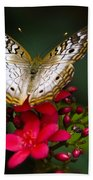 Pretty Little Butterfly  Beach Towel