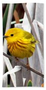 Pretty Little Yellow Warbler Beach Towel