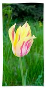 Pretty Pastel Tulip Beach Towel