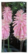 Pretty Pink Forest Lily Beach Towel