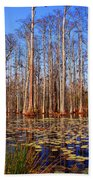 Pretty Swamp Scene Beach Towel by Susanne Van Hulst