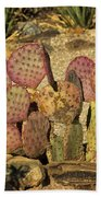 Prickly Pear Cactus Dsc08545 Beach Towel