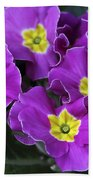 Primrose Purple Beach Towel