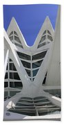 Principe Felipe Science Museum Valencia Beach Towel