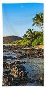 Private Paradise Beach Towel