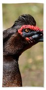 Profile Of A Brown Muscovy Duck Beach Towel