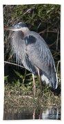 Pround Blue Heron Beach Towel