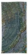Pruned Limb On Live Oak Tree Beach Towel