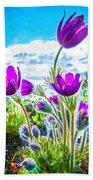 Pulsatilla Vulgaris Flowers Beach Towel