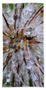 Pulsatilla Vulgaris Flower Design Beach Towel