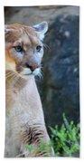 Puma On The Watch Beach Sheet