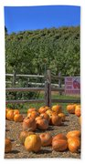 Pumpkins On The Farm Beach Towel