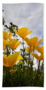 Purely Poppies  Beach Towel