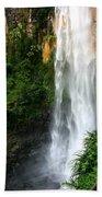 Purlingbrook Falls Beach Towel