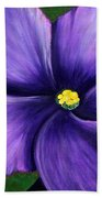 Purple African Violet Beach Towel