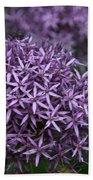 Purple Allium Beach Towel