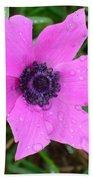 Purple Anemone - Anemone Coronaria Flower Beach Towel