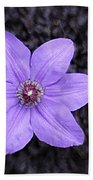 Purple Beauty Beach Towel