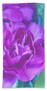 Purple Carnations Beach Towel