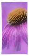 Purple Coneflower - Echinacea Purpura Beach Towel