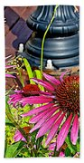 Purple Coneflowers By Former Railroad Depot In Pipestone-minnesota Beach Towel
