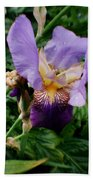 Purple Flower After Rainfall Beach Towel by Doc Braham