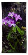 Purple Flower At Enchanted Rock Beach Towel
