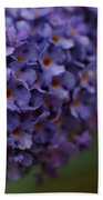 Purple Flowers 1 Beach Towel