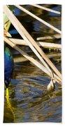 Purple Gallinule 4 Beach Towel