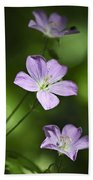 Purple Geranium Flowers Beach Towel